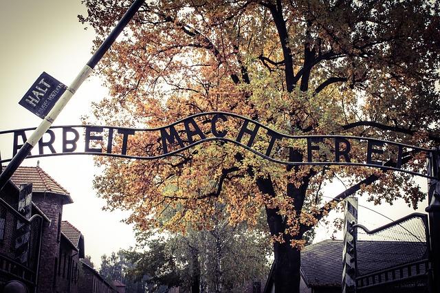 Bando di selezione per il progetto 'Promemoria Auschwitz'