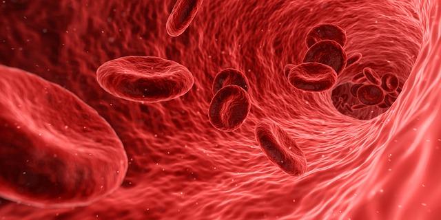 UNA SCELTA IN COMUNE - Esprimi la tua volontà sulla Donazione di Organi e Tessuti
